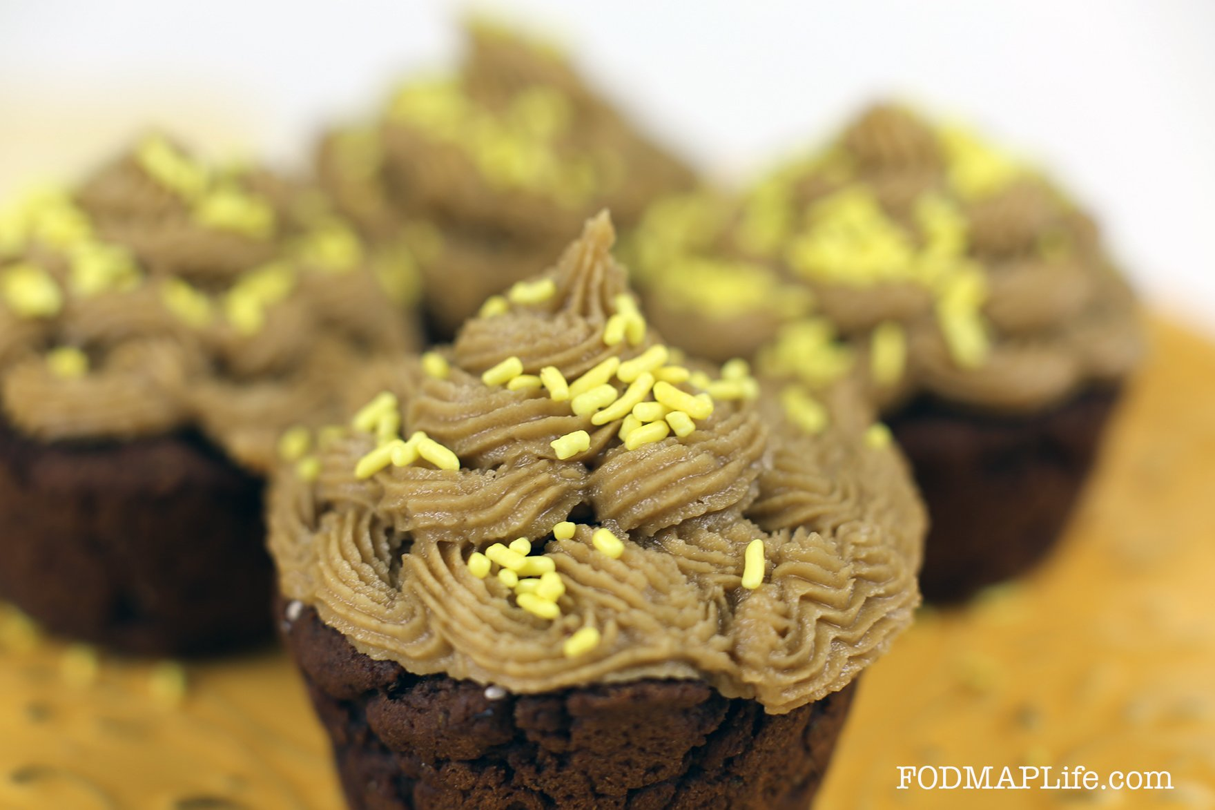 low fodmap chocolate teff cupcakes